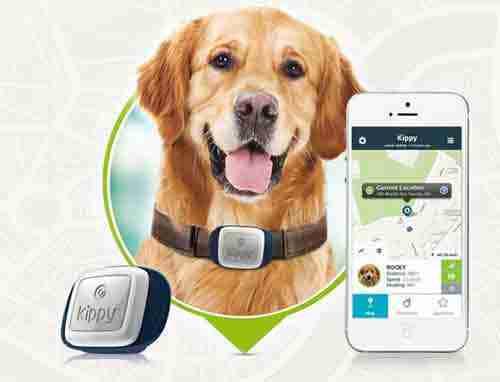 Localizzatore-GPS-per-cani-e-gatti-Vodafone-Kippy-A