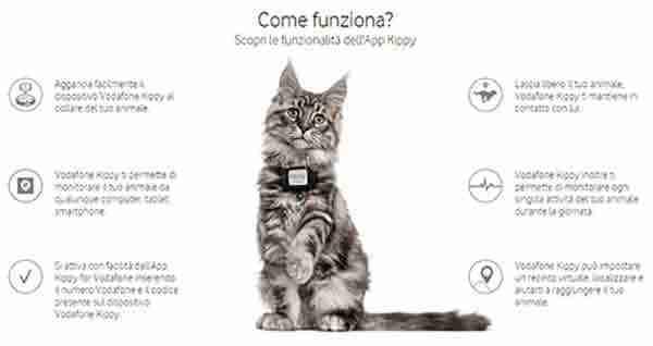 Localizzatore-GPS-per-cani-e-gatti-Vodafone-Kippy-C